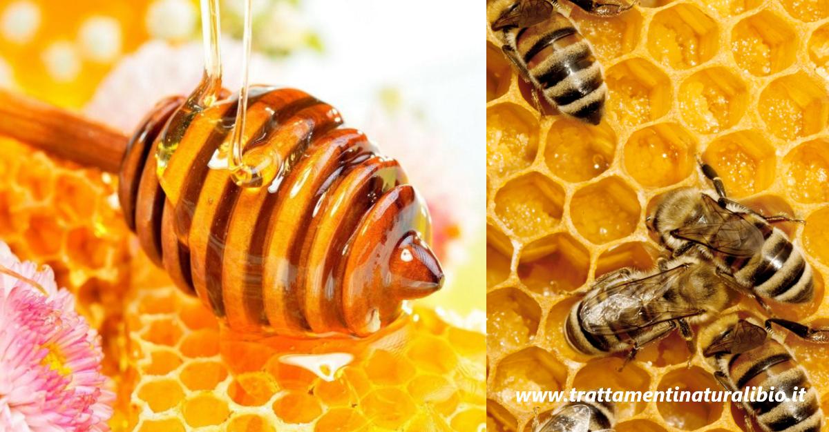 Miele è un Arma contro Superbatteri Antibiotico-Resistenti