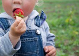 Allergie Alimentari e Bimbi: 5 Falsi Miti da Sfatare