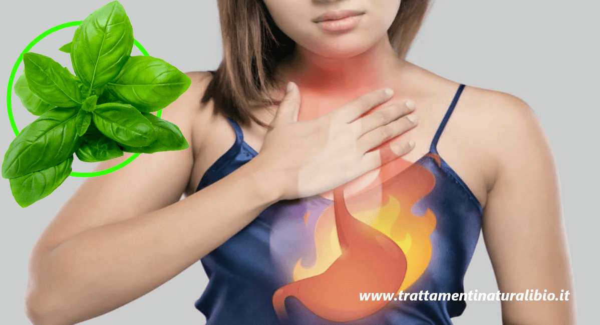 Come combattere l'acidità di stomaco con il basilico