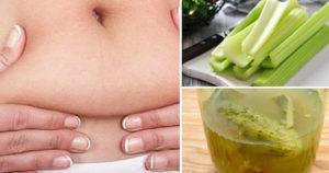 Infuso di sedano per eliminare il gonfiore, disintossicarsi e dimagrire