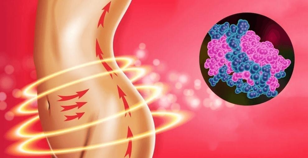 Come attivare l'ormone della sazietà: ci fa sentire sazi mangiando molto meno