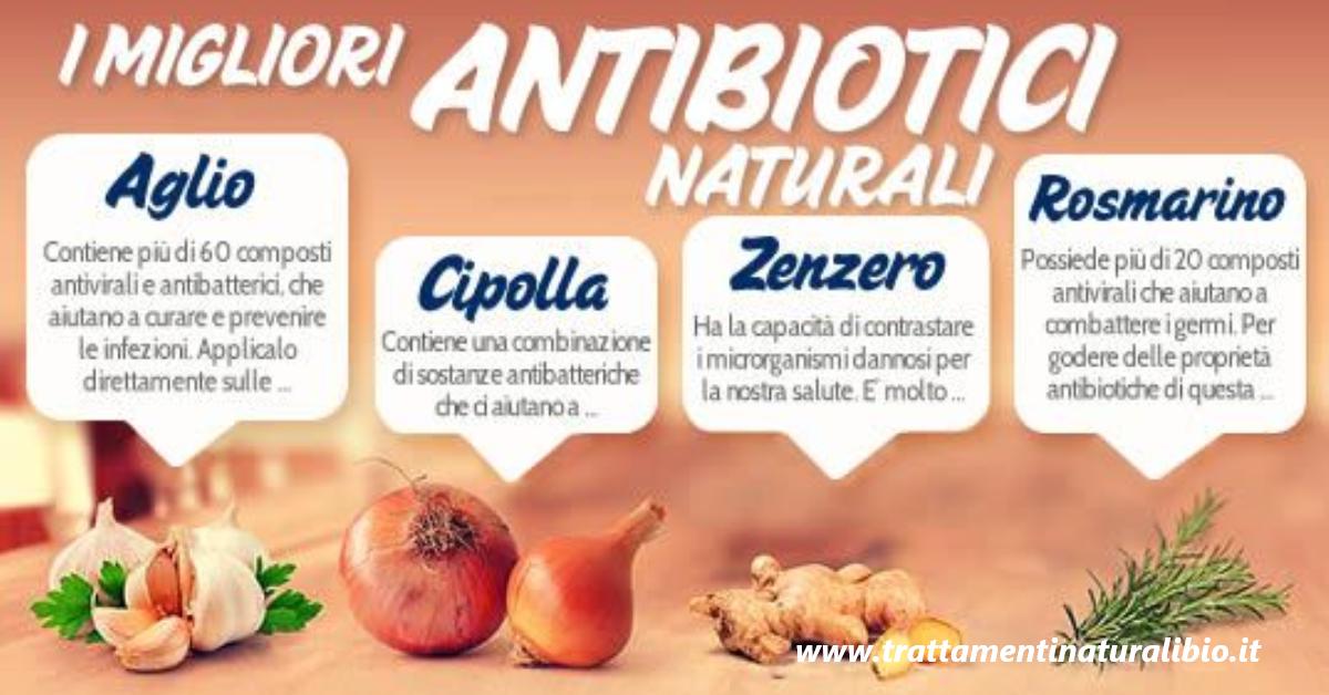 Gli 11 antibiotici naturali più potenti
