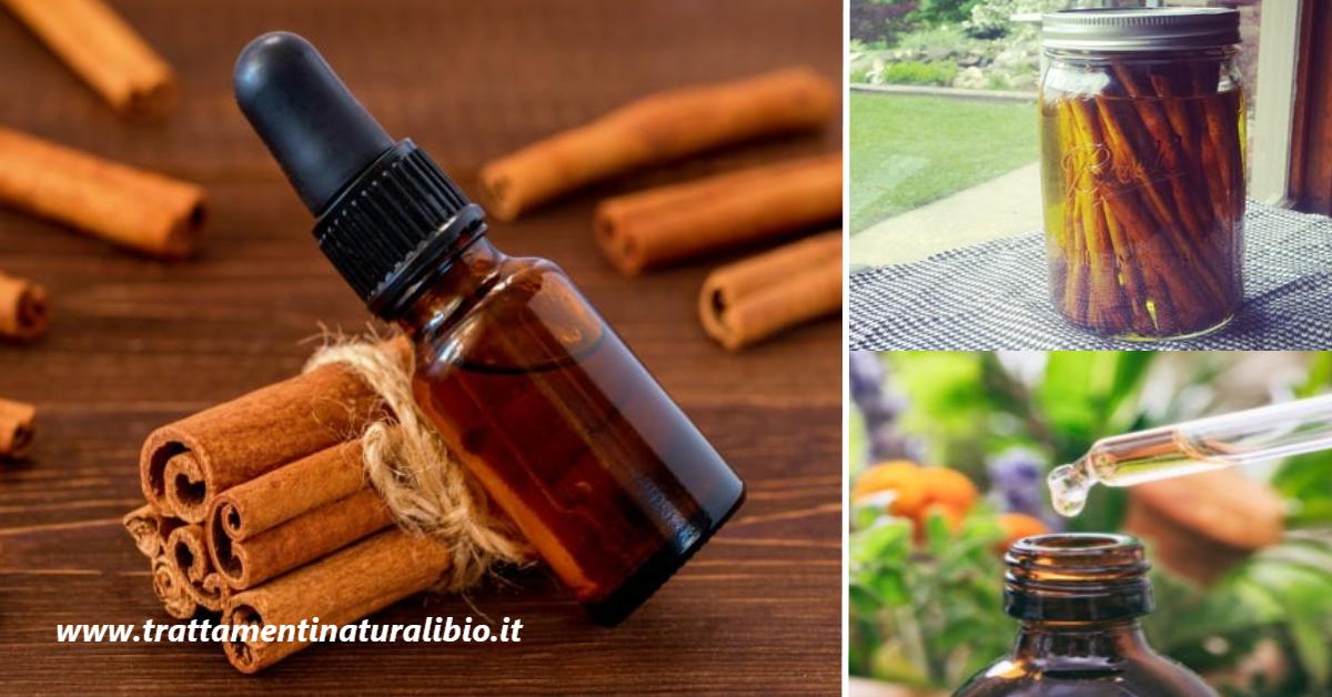 Olio essenziale di cannella: ricco di proprietà e benefici. Ecco come prepararlo