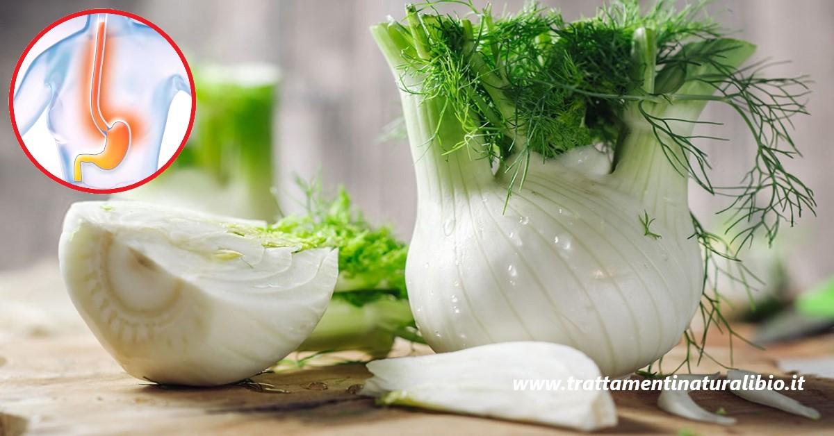 Il finocchio: l'ortaggio che cura acidità, gonfiore addominale, calcoli renali e fegato grasso