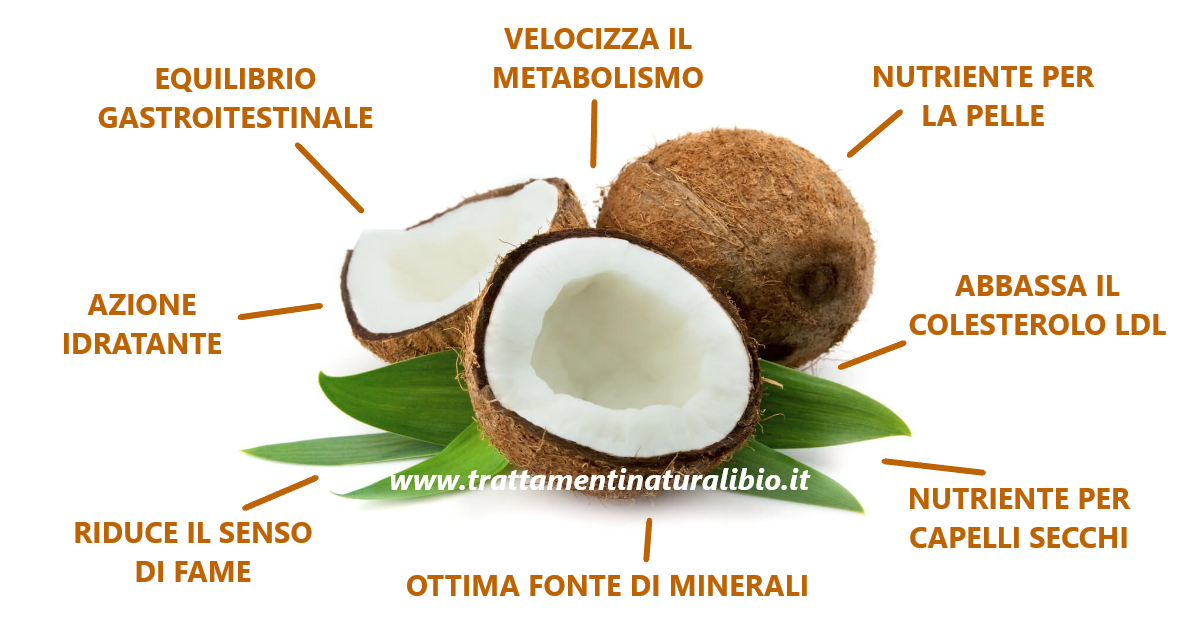 Proprietà Benefiche del Cocco