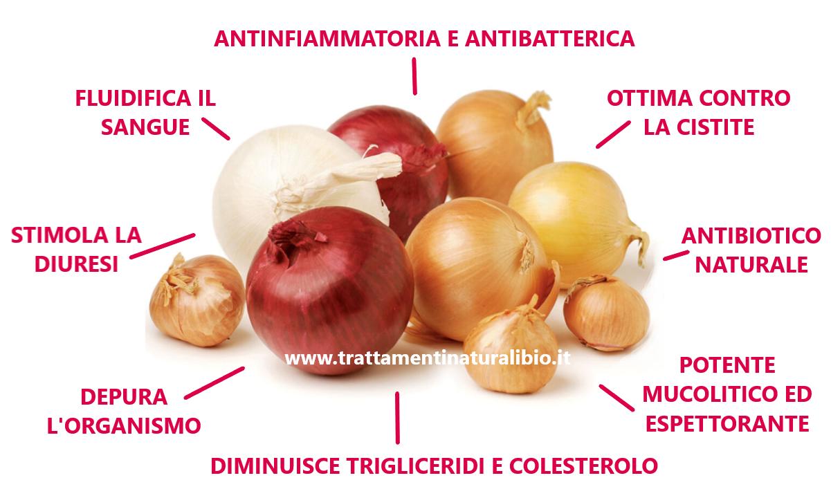 Proprietà Benefiche della Cipolla