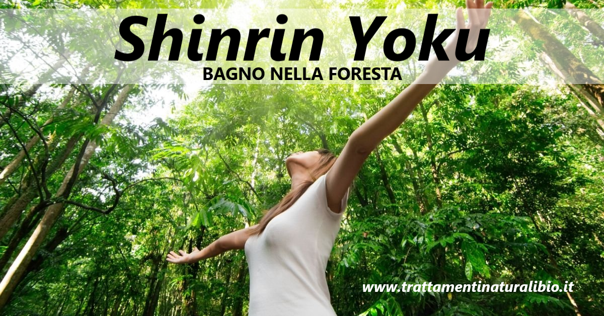 Shinrin Yoku: Camminare nei boschi rigenera corpo e mente