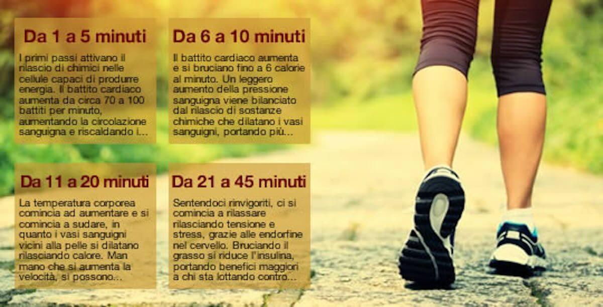 Camminare 15 minuti al giorno per migliorare corpo, mente e salute