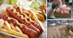Tutta la verità su come sono fatti i würstel e come prepararli a casa gustosi e sani