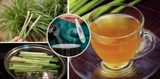 Come preparare l'infuso di citronella contro influenza, febbre e raffreddore