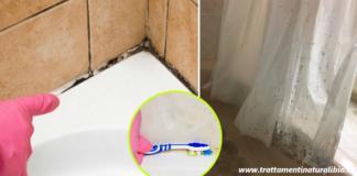 Come togliere la muffa dal bagno: rimedi per doccia, tende e piastrelle