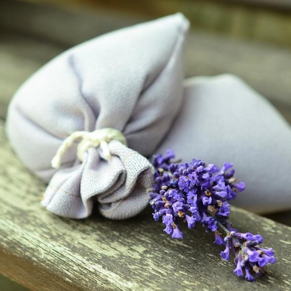 Come togliere l'odore di umidità e di muffa dagli armadi per sempre