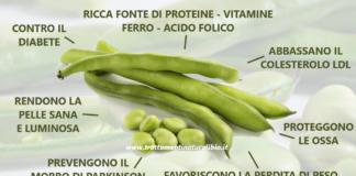 Gli incredibili benefici delle fave: 10 motivi per mangiarne di più