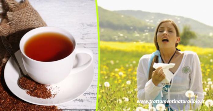 Allergie primaverili: La tisana che contrasta e riduce i sintomi in modo efficace
