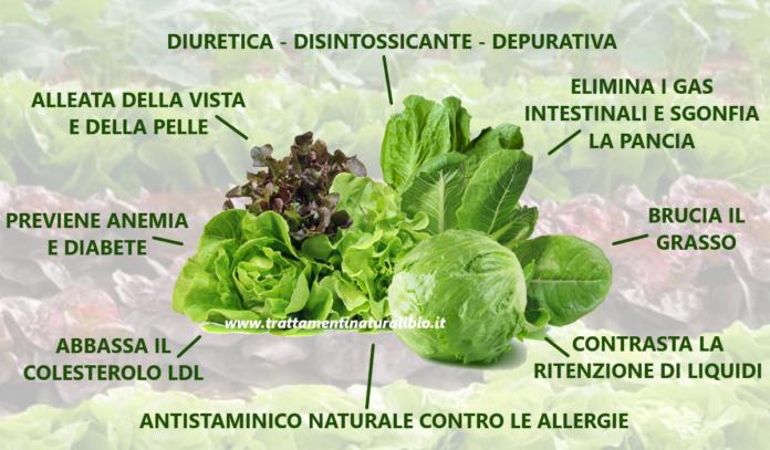 Gli incredibili benefici della lattuga: 7 motivi per mangiarla tutti i giorni
