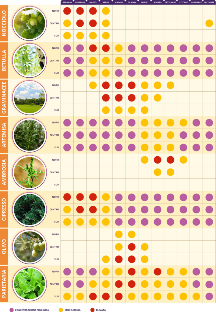 Allergia al polline: Calendario dei pollini
